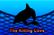 The Killing Cove