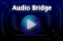 NG Audio Bridge