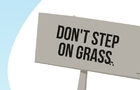 U: Grass