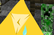Triangle's Mystery