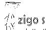 Zigo Studio Commerical