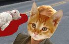 Cat Day Teaser