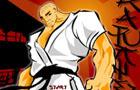 Karate 3 Point Win