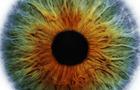 40 Optical Illusions 2