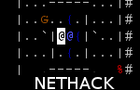 Flash Nethack