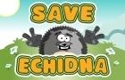 Save Echidna