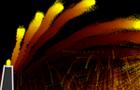 Fireball Canonn