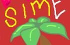 SIM Encounter