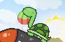Funky Turtles