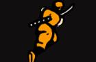 Original Ninja Gaiden