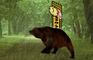Bear Quest V