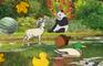 Cute Animals Hidden Game