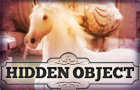 Hidden Object - Majestic