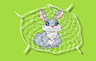 Rabbit Trap