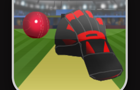 cricket tap catch