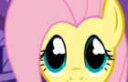 Fluttershy's New Friend