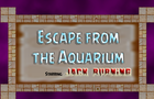 Escape from the Aquarium