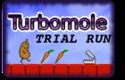 Turbomole Trial Run