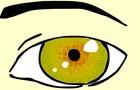 Eye was born