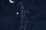 Sreaching the stars