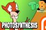 TidBits 2 Photosynthesis