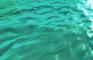 Water Inside My Screen