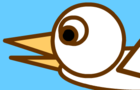 duck flies south