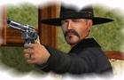 Wild West VII