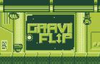 GraviFlip