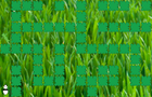 The Great Panda Maze
