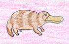The Loneliest Platypus