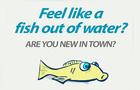 Plop Fish Ad