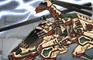 Dino Robot - Gallimimus