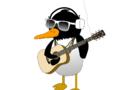 Patrick The Penguin - She Looks Kinda Like A Panda