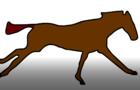 Animation Horse running