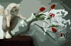 That Cat Doe