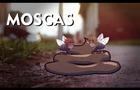 MOSCAZONE | Corto Animado (Eng Sub)