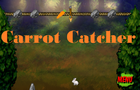 Carrot Catcher