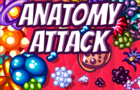 Anatomy Attack