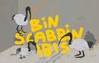 Bin Scabbin' Ibis