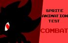 Sprite Animation (Test) | Combat