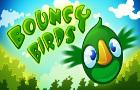 Bouncy Birds