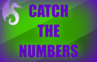 Catch The Numbers!