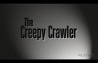 The Creepy Crawler