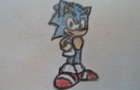A Sonic Photo Animation