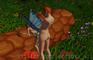Futa Elf x Fairy standing