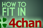 How to fit in on 4chan