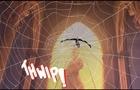 Spiderman Spider-Verse Gwen fan animation