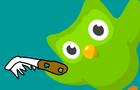 Duolingo Bird Meme Animation Animated