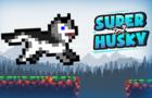Super Husky:Adventure platform game